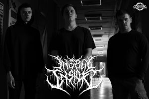 INSECT INSIDE Signs To Gore House Productions